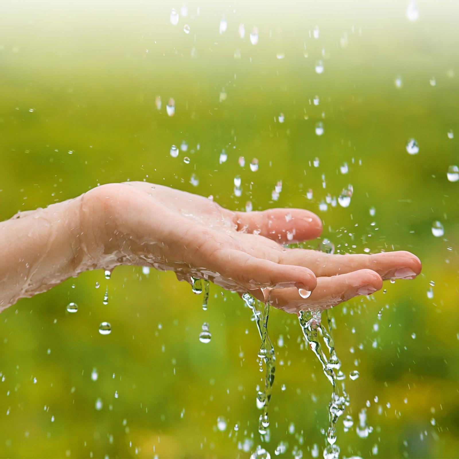 Alles Gute Kommt Von Oben: Regenwasser Optimal Nutzen | Mai 2018 |  Familienheim Und Garten