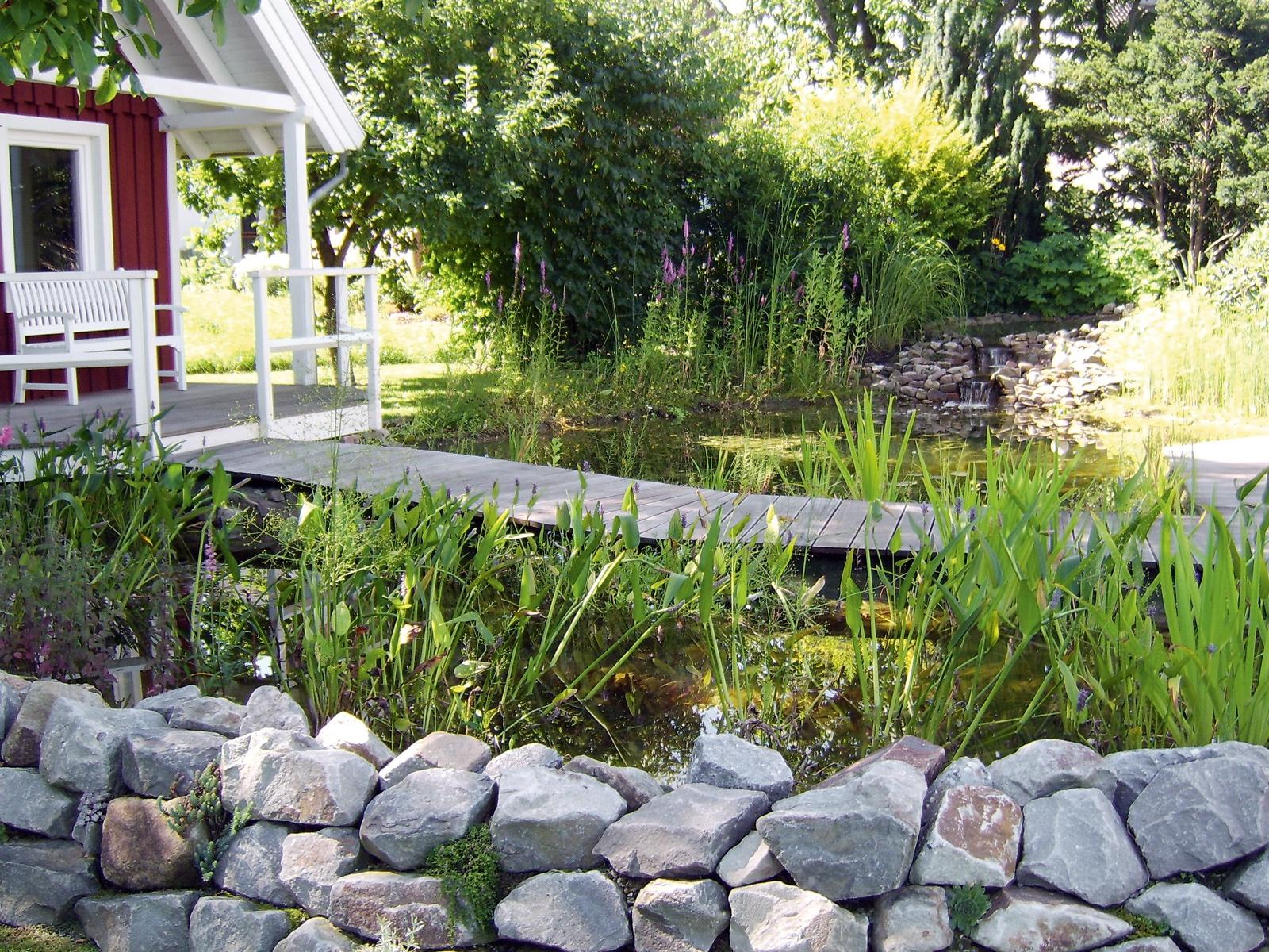 Regenwasser Fur Den Gartenteich Mai 2018 Familienheim Und Garten